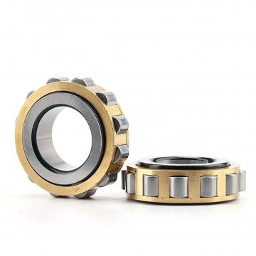 3.346 Inch | 85 Millimeter x 7.087 Inch | 180 Millimeter x 1.614 Inch | 41 Millimeter  CONSOLIDATED BEARING NJ-317  Cylindrical Roller Bearings